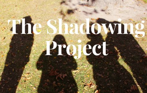 The Shadowing Project