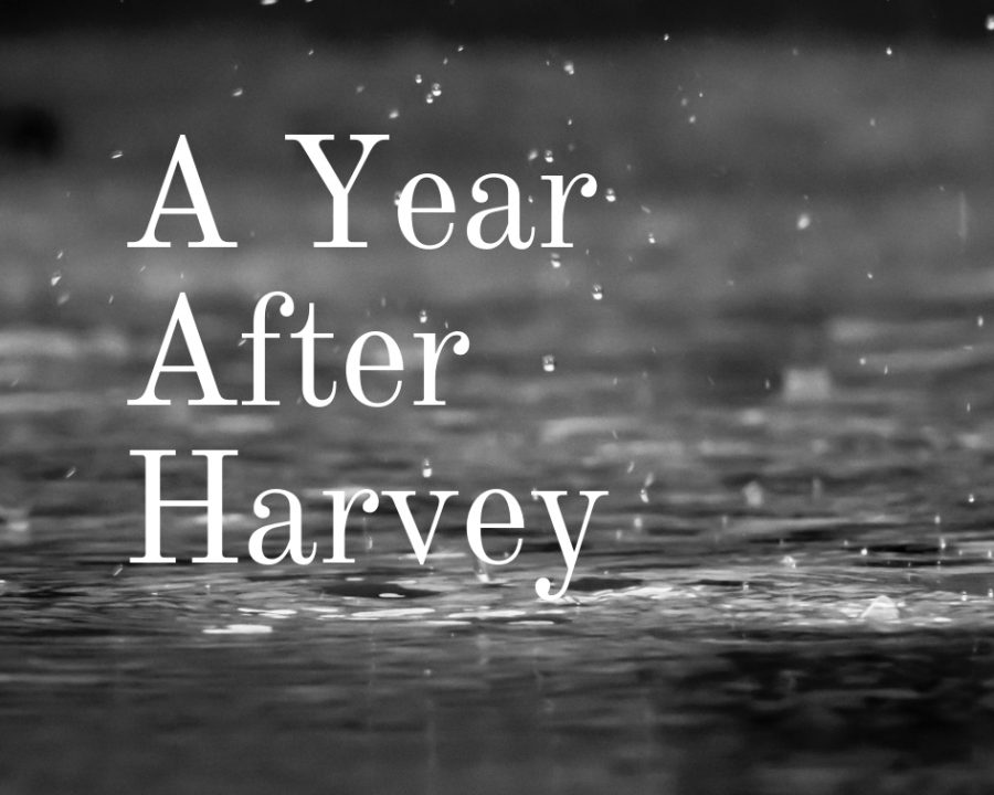 A Year After Harvey