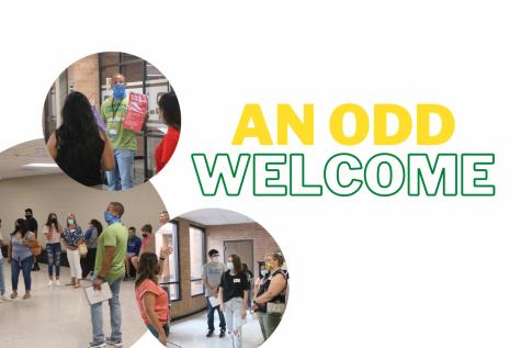 An Odd Welcome
