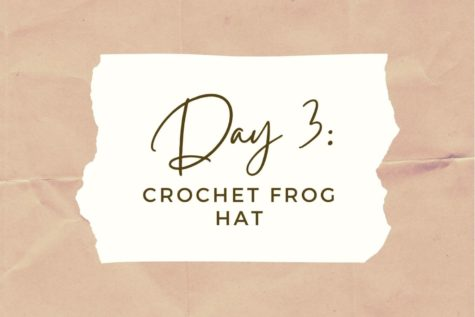 DAY 3: Crochet Frog Bucket Hat