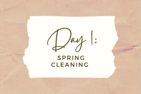DAY 1: Spring Cleaning